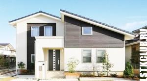 Зарубежный проект жилого дома из ЛСТК
