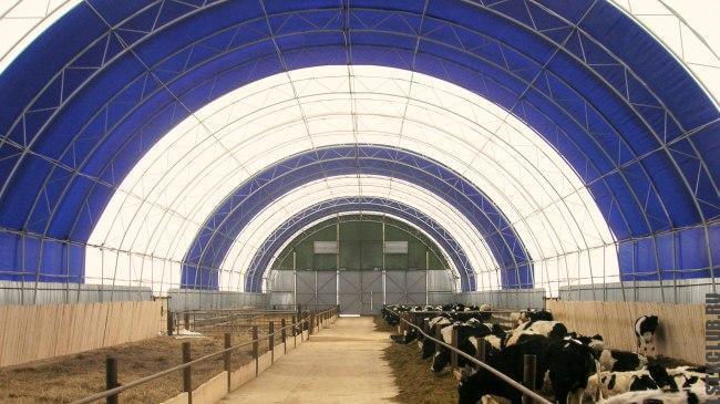 Коровник (сельскохозяйственный тентовый склад)
